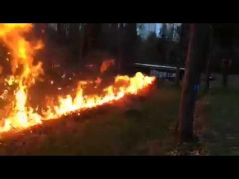 落ち葉を燃やそうとする男性が火をつけると・・・。
