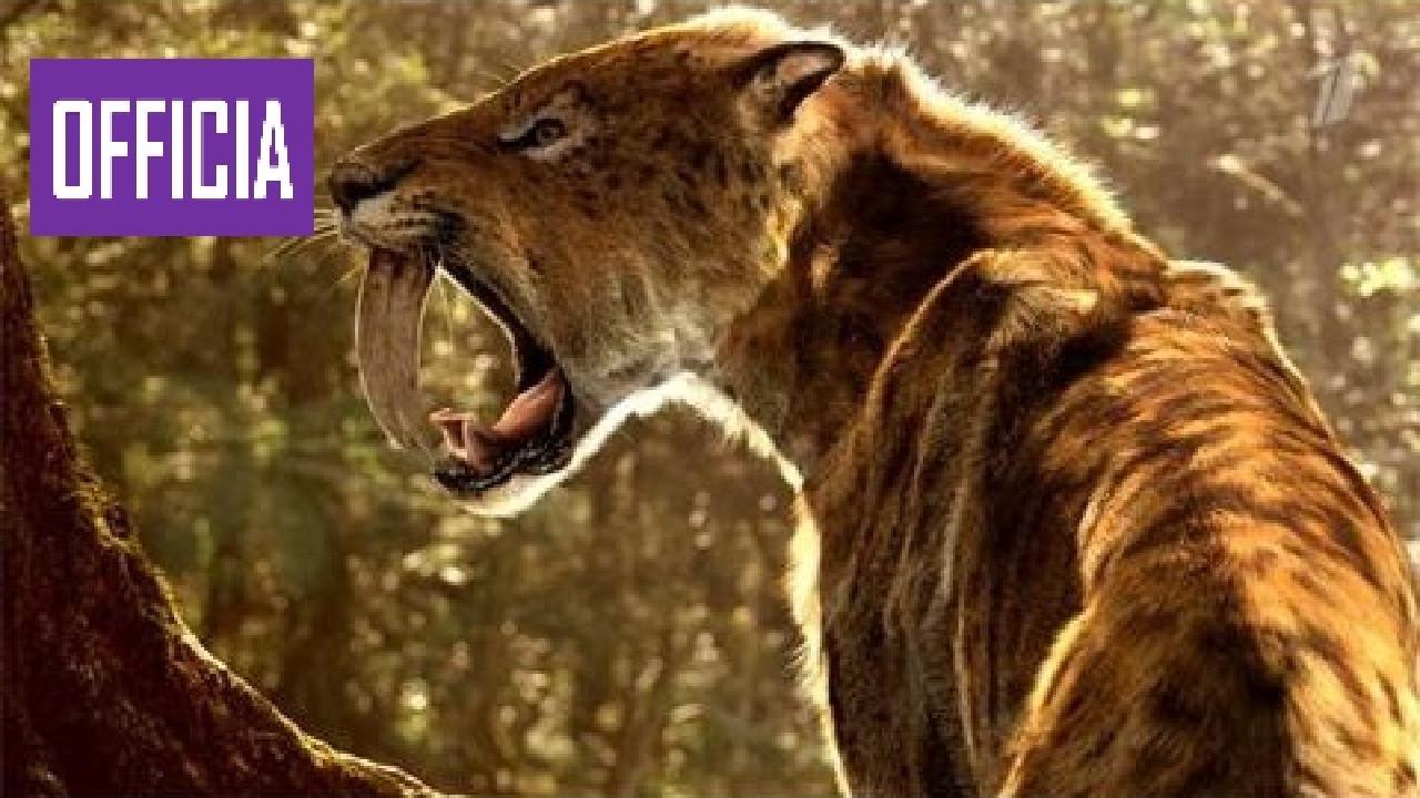Pictures of sabertooth tiger Payara, Hydrolycus scomberoides, Vampire Tetra Characin