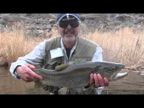 Fly Fishing with Marcelo - Monster Trout, Bishop, CA.