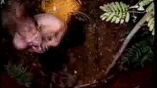Клип Skillet - Gasoline