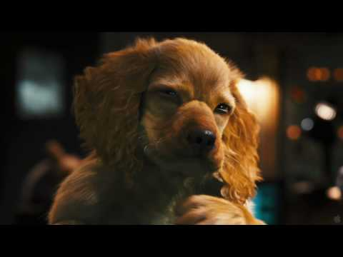 Cats and Dogs: The Revenge of Kitty Galore 3D Full 1080p HD