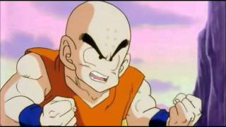 Krillin Owned Count Episodes 1-21 (DBZA)