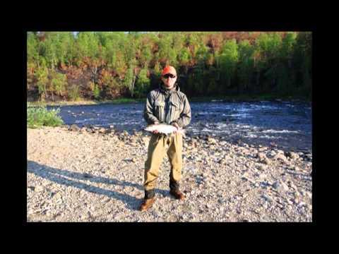 рыбалка на титовке видео