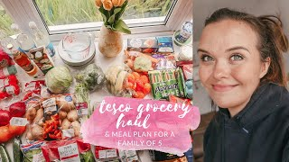 TESCO GROCERY HAUL & MEAL PLAN - FAMILY MEAL IDEAS - MAY 2020