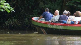 Tortuguero  Costa Rica. Sailing along the National Park