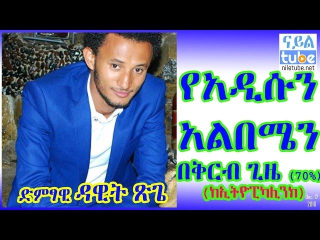 Musical Artist Dawit Tsige