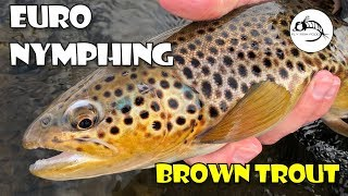 Euro Nymphing the Provo -- WINTER Fly Fishing