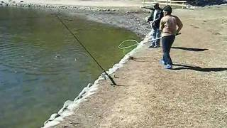 Play camping at yucaipa regional park for Yucaipa regional park fishing