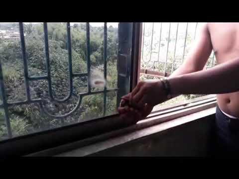 VIDEO LUCU..!!!Ngakak..Ngerjain Cewek Cantik Lagi Berak Lempar Pake Mercun Kelihatan Itunya . thumbnail