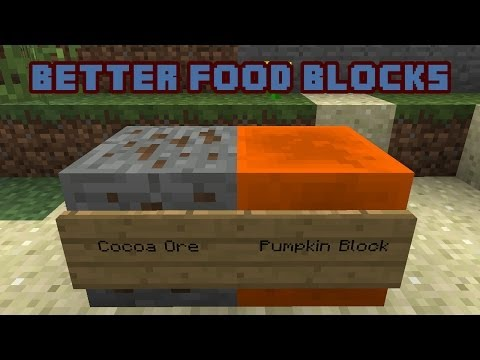 Better Food Blocks Minecraft Concept