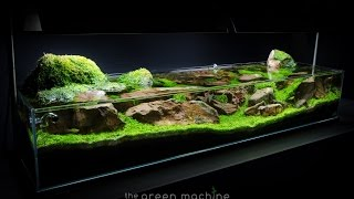 Aquascape zelfstudiegids: 'Continuïteit' door James Findley & The Green Machine