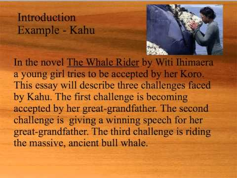 whale rider book essay