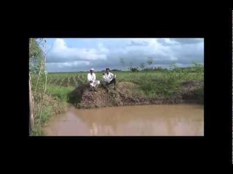 Farm Pond Uses Kannada BAIF Karnataka