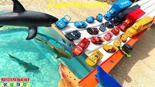 TRANSPORTADOR DE CRUZ RAMIREZ CARS 3 CAMPEONATO CON RAYO MCQUEEN Carros de Carrera para niños DISNEY