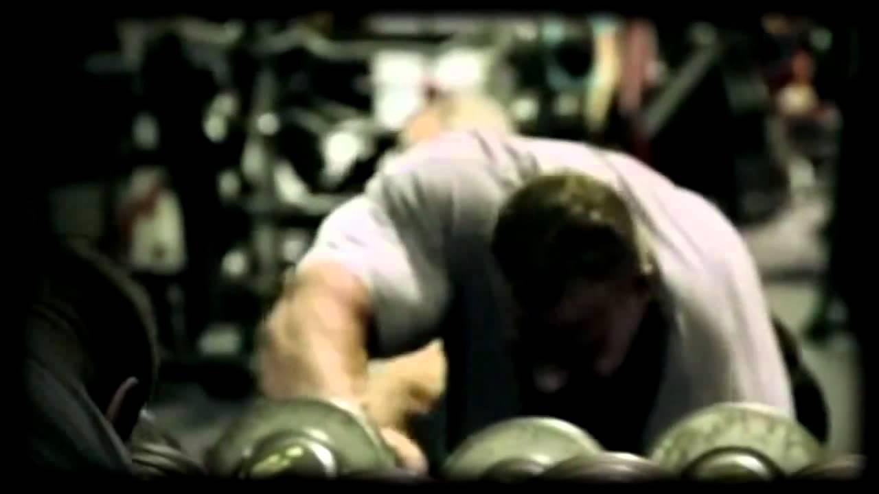 Bodybuilding Inspiration - Viewing Gallery Arnold Schwarzenegger Quotes