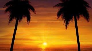 "Peaceful music, Instrumental music, Relaxing beautiful music ""Tropical Sun"" By Tim Janis"