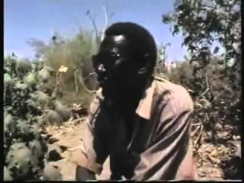 Nuba Mountains   Sudan Music Videos
