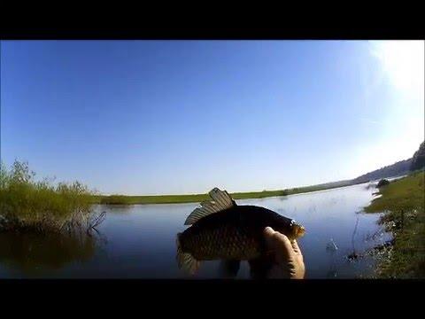 Рыбалка на майхе в мае 2016 карась