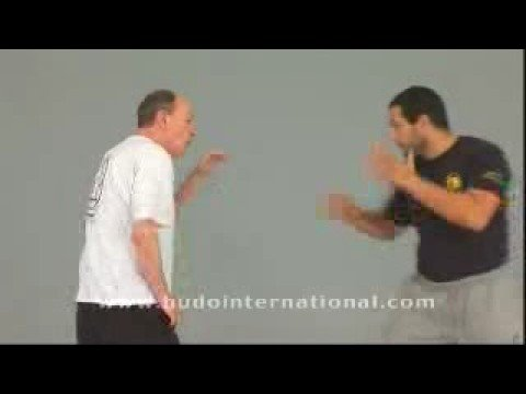 JEET KUNE DO. SPARRING by Tim Tackett Image 1