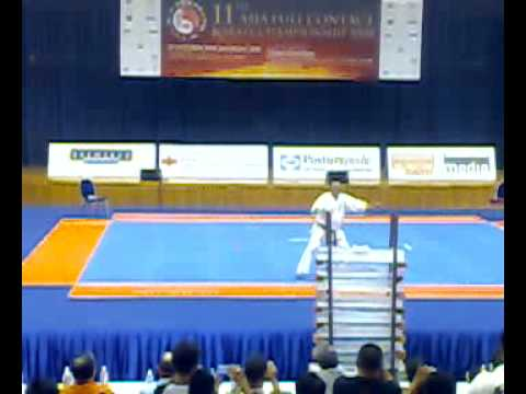 Kyokushin Karate Shihan Peter Chong Ice Breaking Demonstration Image 1