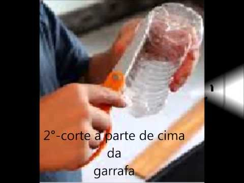 tutorial codorna