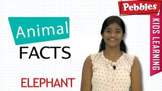 Interesting Animal Facts : Elephant | Elephant Essay in Bengali | Elephant Song |Story|Learn Animals
