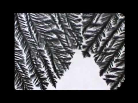 24 Tage - 24 Experimente: 20. Dezember - Salzkristalle im Eiltempo züchten