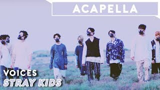 Stray Kids - Voices   Acapella