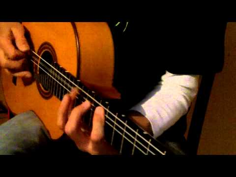 Paco de Lucia meets Al di Meola: Bellido Flamencoguitar with Carlos VIP Pickup and Crown Mic