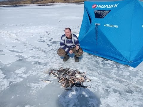 видео ловли леща на красноярском водохранилище