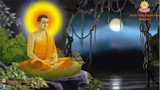 Nhạc Thiền Nhẹ Nhàng Cho Buổi Sáng An Lạc
