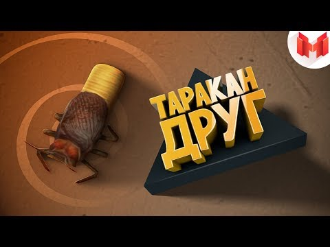 [Игродно] Друг таракан