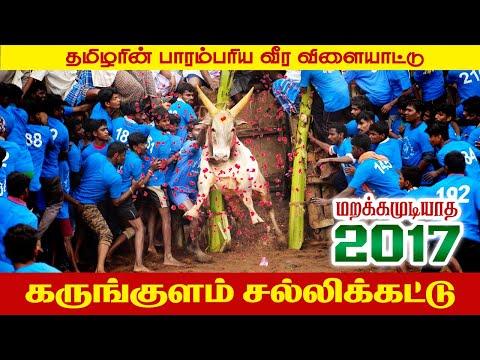 Karungulam Jallikattu 2017 Promo #1