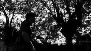 Vídeo 41 de Árbol