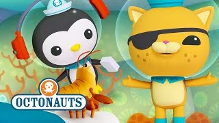 Octonauts - Action Packed Sea Mission No.4
