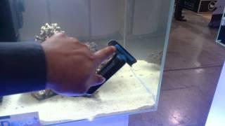 New aquarium Magnet that will not scratch glass