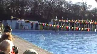 World Winter Swimming Champs London