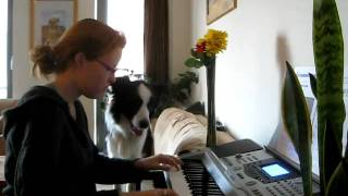 Playing keyboard with my dog!