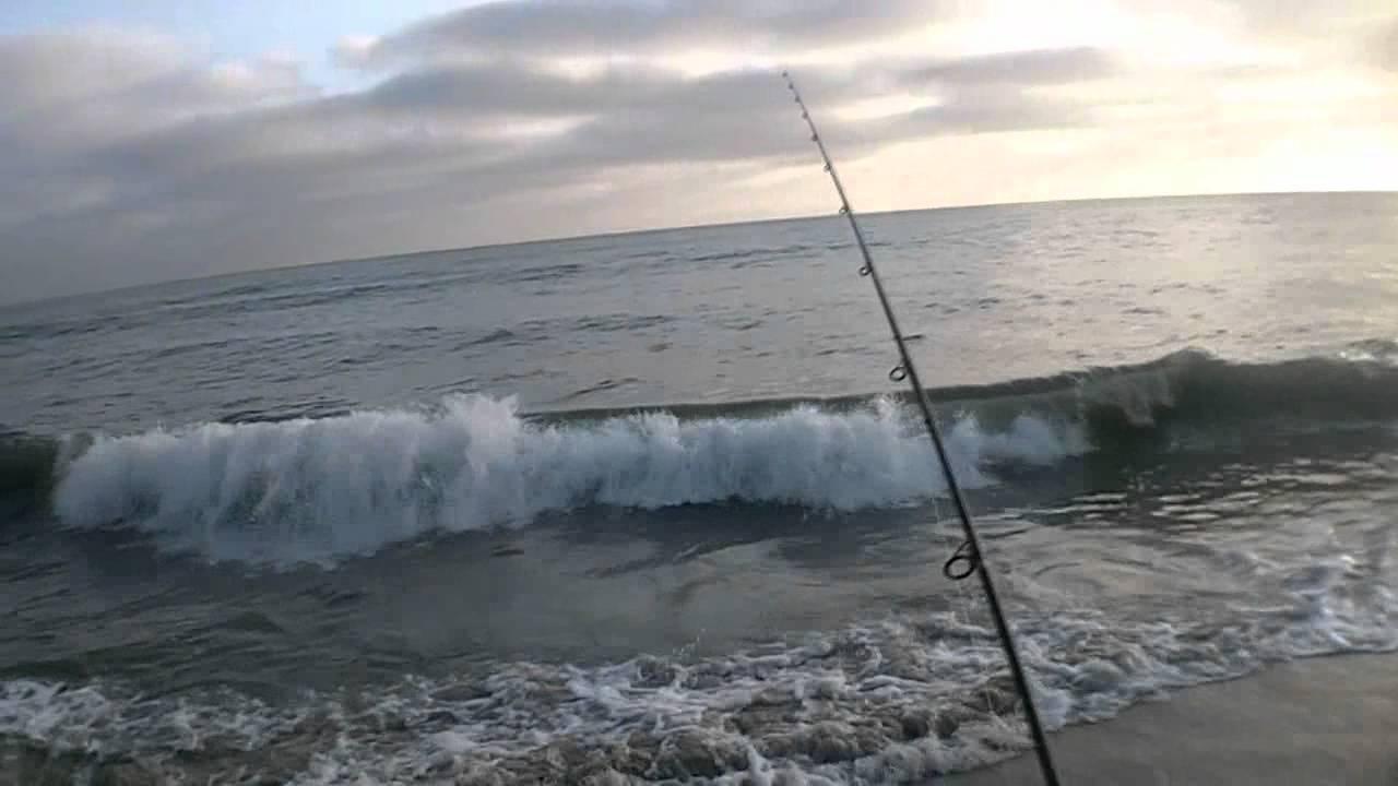 Oceanside surf fishing 05 31 12 youtube for Oceanside fish report