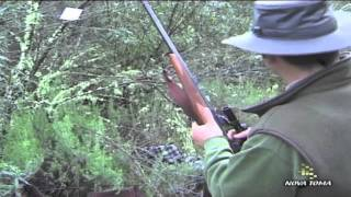Hunting video  - part 2