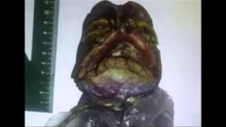 Una anciana rusa tenía congelado a un extraterrestre