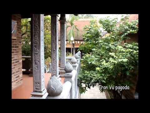 Video Contest vietnam: My Voice, My Video: Peace video