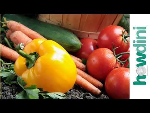 Organic gardening: How to grow an organic vegetable garden - Biokertészkedés