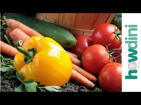 Organic gardening: How to grow an organic vegetable garden