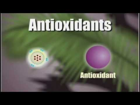 How Antioxidants Work