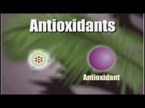 How Antioxidants Work