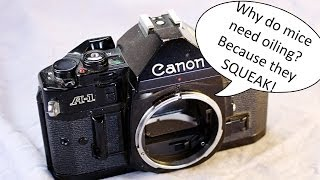 What does the Canon Squeak Sound Like?