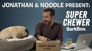 Unboxing the Dogsmas in the City SUPER CHEWER BarkBox with Jonathan & Noodle!