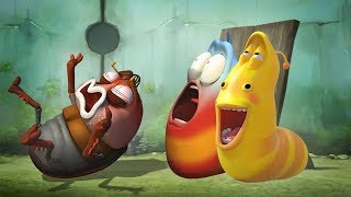 LARVA - BLOWN AWAY | Cartoon Movie | Cartoons For Children | Larva Cartoon | LARVA Official