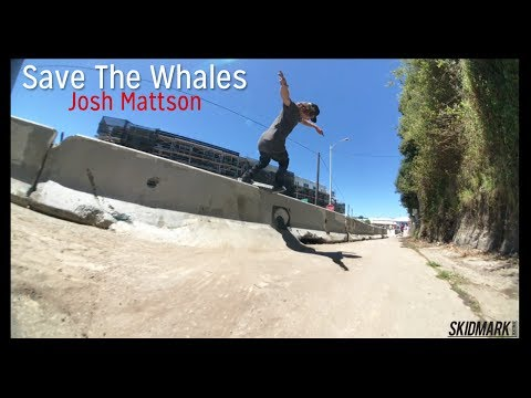 Save The Whales | Josh Mattson